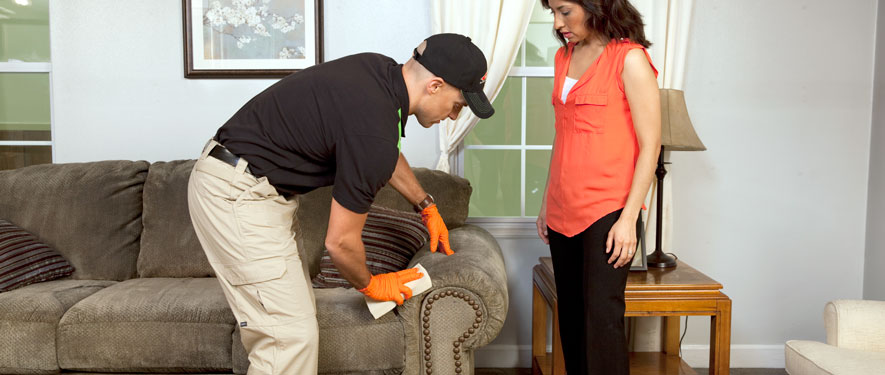 Fraser, MI carpet upholstery cleaning